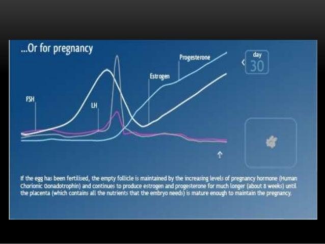 j steroid biochem mol biol impact factor