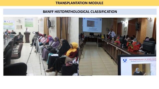 Isn educational-ambassadors-program summary-2