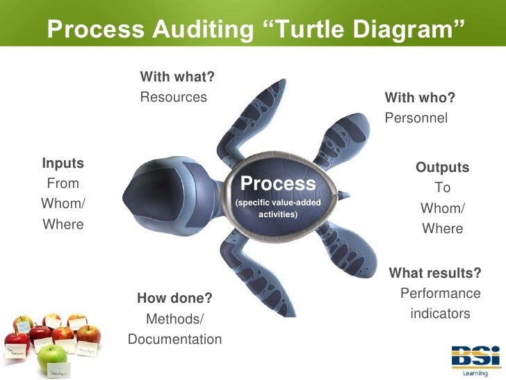 Turtle Diagram For Pdca Audit Diy Enthusiasts Wiring Diagrams