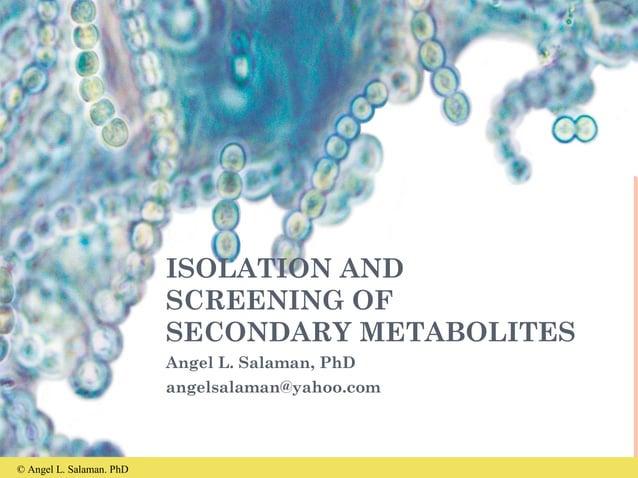 © Angel L. Salaman. PhD ISOLATION AND SCREENING OF SECONDARY METABOLITES Angel L. Salaman, PhD angelsalaman@yahoo.com