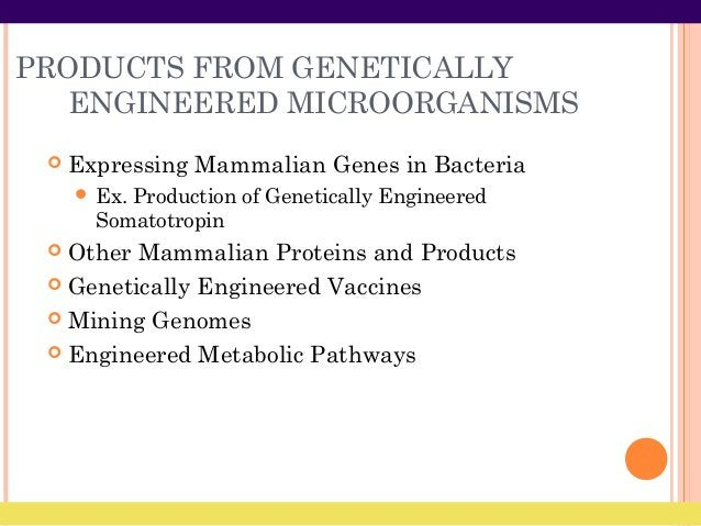PRODUCTS FROM GENETICALLY ENGINEERED MICROORGANISMS  Expressing Mammalian Genes in Bacteria  Ex. Production of Genetical...