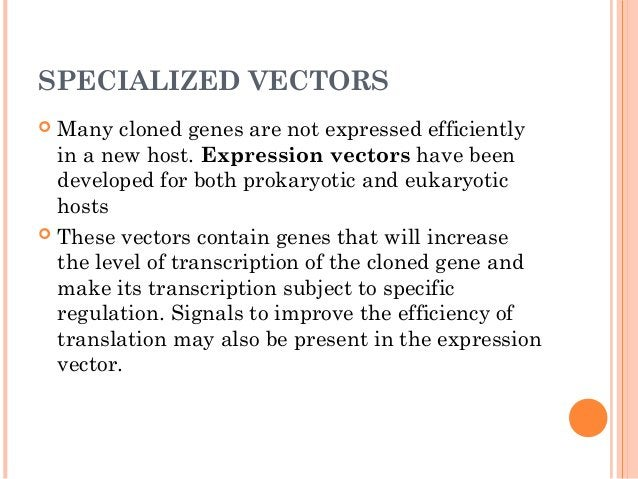 • This can be accomplished by using reverse transcriptase to synthesize cDNA from the mature mRNA encoding the protein of ...