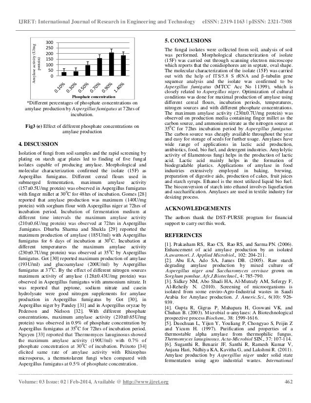 Amylase lab report Paper