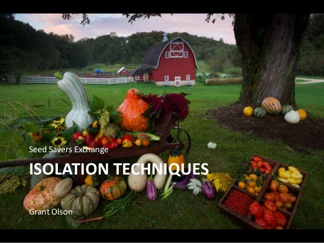 ISOLATION TECHNIQUES Seed Savers Exchange Grant Olson