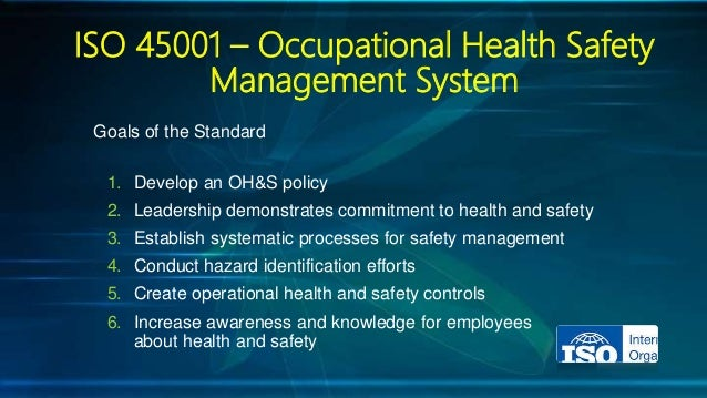 occupational health and safety management systems pdf