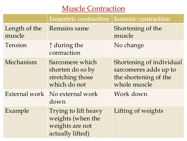 Isotonic & isometric contraction