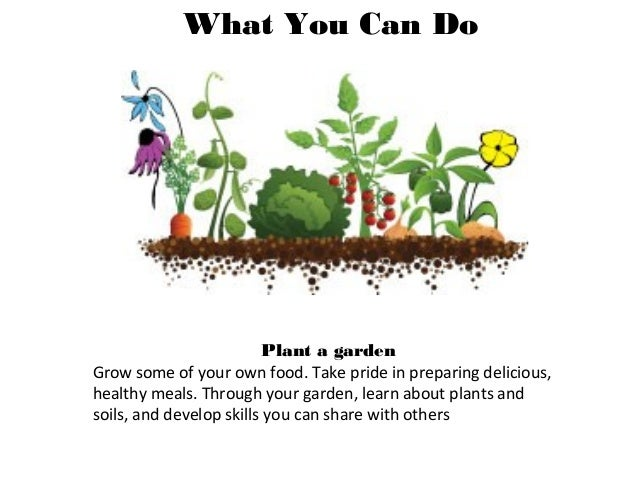 How we change the system Buy and grow healthy food, support the producers of healthy food Every time we step into a grocer...