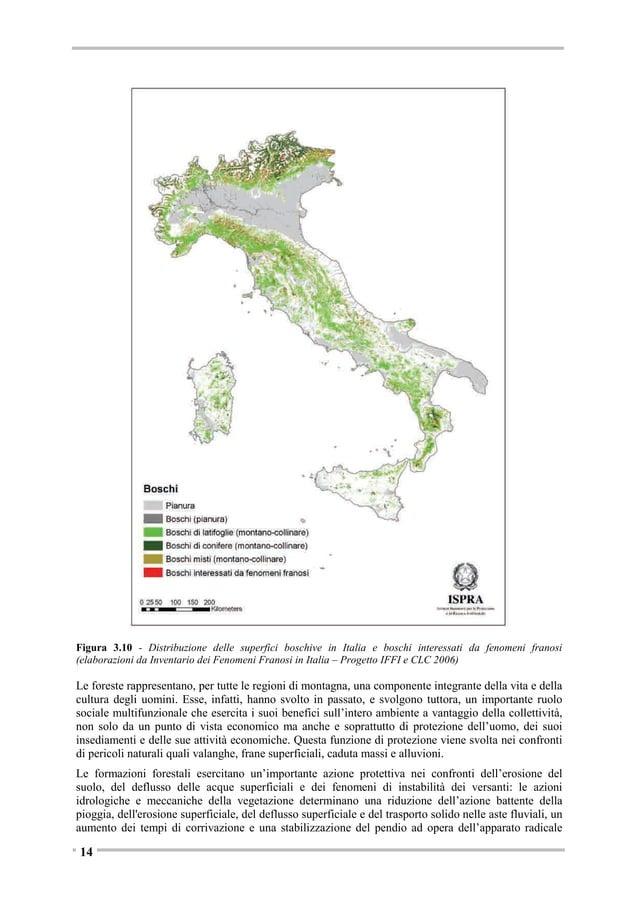 • riparo per la fauna selvatica; • creazione di corridoi ecologici e aumento del valore paesaggistico dell'area interessat...