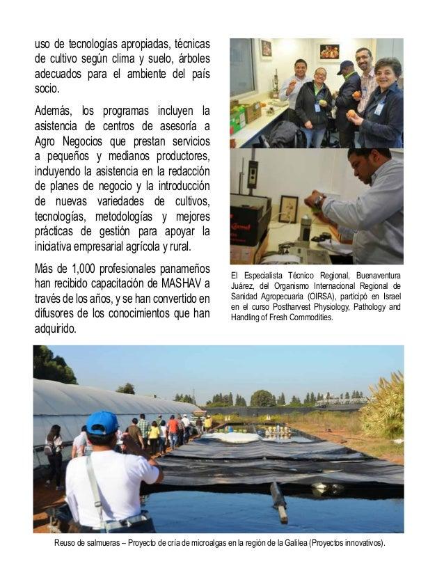 Gladys Villarreal Madrid, funcionaria de la Dirección de Gestión Integrada de Cuencas Hidrográficas de  la Autoridad Nacio...
