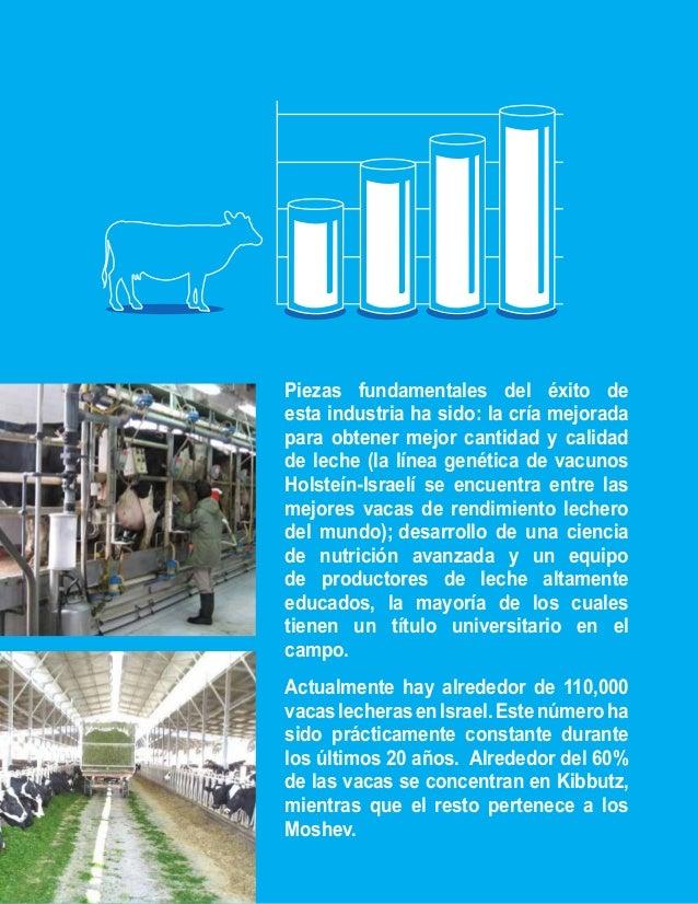Hoy en día, la producción media de leche  por vaca en Israel, ha aumentado dos  veces y medio desde la década de los 50,  ...
