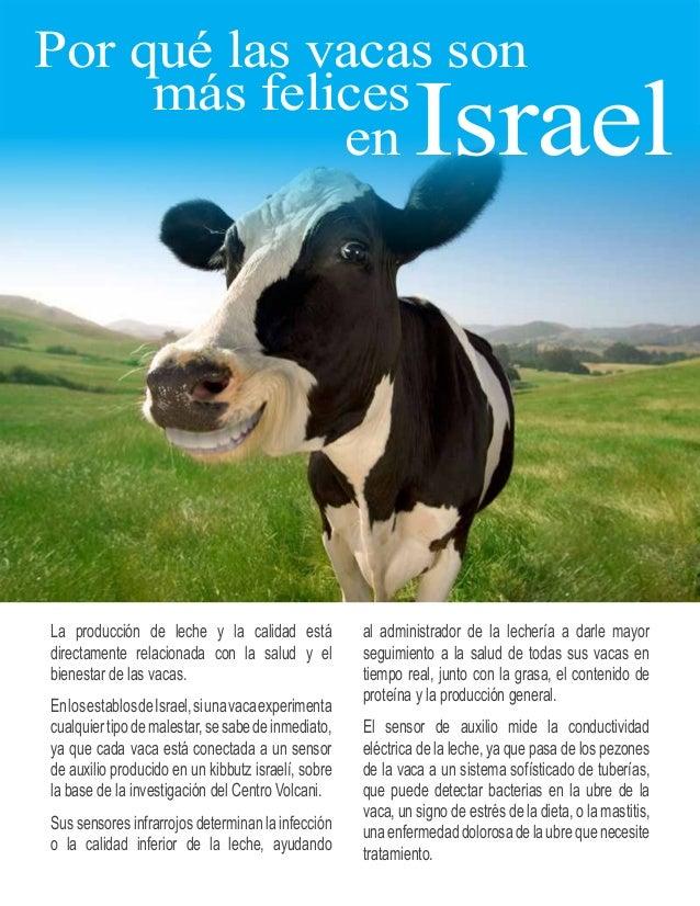 PRODUCIENDO  CULTIVOS  GOTA A GOTA  Hace 66 años, los agricultores  israelíes se enfrentaban  al dilema de cómo hacer  flo...