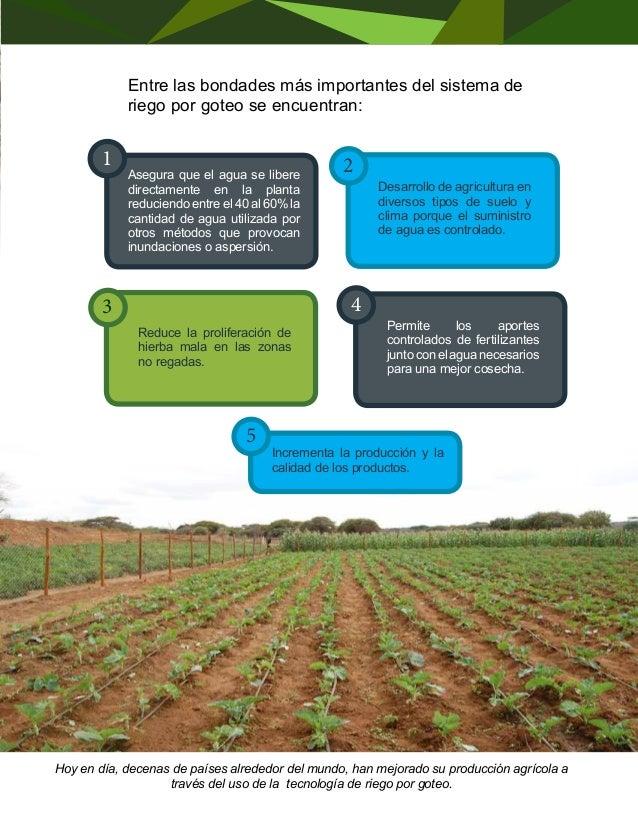 AGUA RECICLADA  AL SERVICIO  DE LA AGRICULTURA  El desarrollo de la agricultura de manera  intensiva o extensiva implica l...