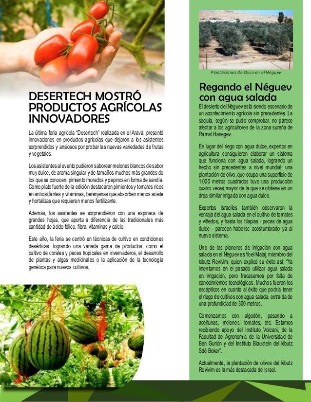 TECNOLOGÍA AL SERVICIO  DE LA AGRICULTURA  La agricultura de Israel se caracteriza por  un elevado nivel tecnológico. Se d...