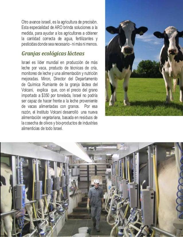 El sistema Afimilk- asistido por el Volcani, provee de una  capa de seguridad extra para asegurar que las vacas  que coman...