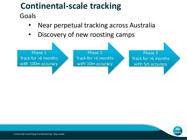 Towards Continental-scale Tracking of Flying Foxes