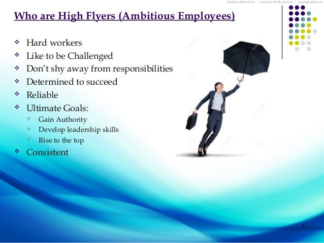 Issues Problems In The Managment Of High Flyer