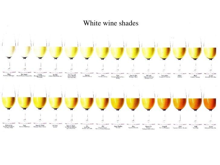 White wine shades                         HC /12.07