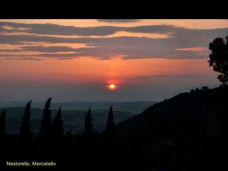 Nestorello, Mercatello