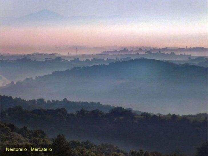Nestorello , Mercatello