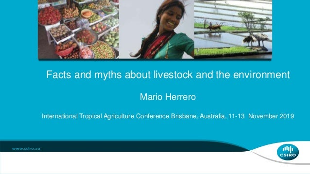 Facts and myths about livestock and the environment Mario Herrero International Tropical Agriculture Conference Brisbane, ...