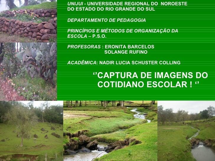 UNIJUI  - UNIVERSIDADE REGIONAL DO  NOROESTE  DO ESTADO DO RIO GRANDE DO SUL DEPARTAMENTO DE PEDAGOGIA PRINCÍPIOS E MÉTODO...
