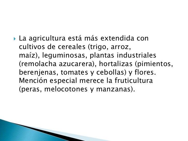    La agricultura está más extendida con    cultivos de cereales (trigo, arroz,    maíz), leguminosas, plantas industrial...