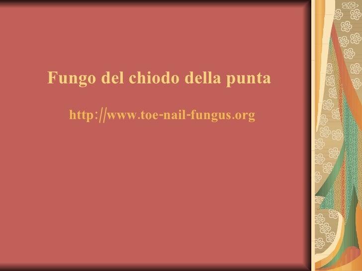 Fungo del chiodo della punta   http://www.toe-nail-fungus.org