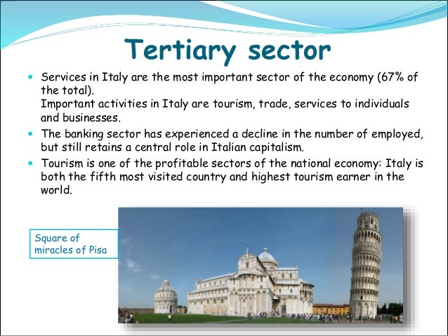 importance of tertiary sector Chapter 8: the structure of the united states economy tertiary sector: in addition to assessing the relative importance of each sector based on gdp.