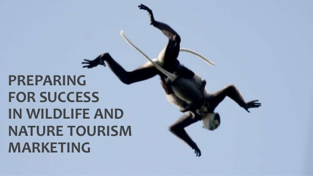 PREPARING FOR SUCCESS IN WILDLIFE AND NATURE TOURISM MARKETING