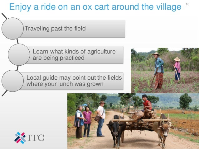 Enjoy a ride on an ox cart around the village 18 Traveling past the field Learn what kinds of agriculture are being practi...