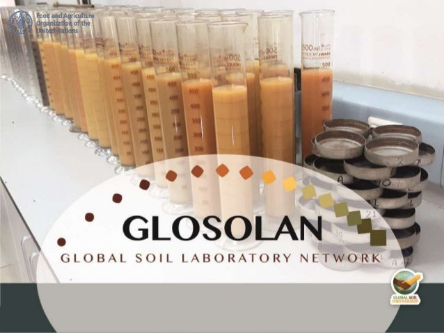 We need to have a clear idea of what GLOSOLAN will work on What are GLOSOLAN's pending and eventual activities?