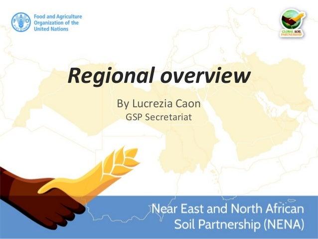 Regional overview By Lucrezia Caon GSP Secretariat