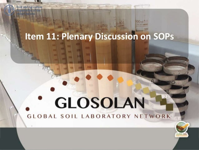 Item 11: Plenary Discussion on SOPs