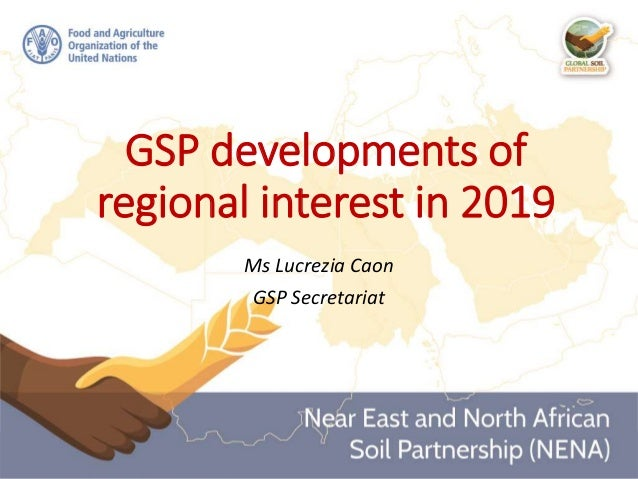 GSP developments of regional interest in 2019 Ms Lucrezia Caon GSP Secretariat