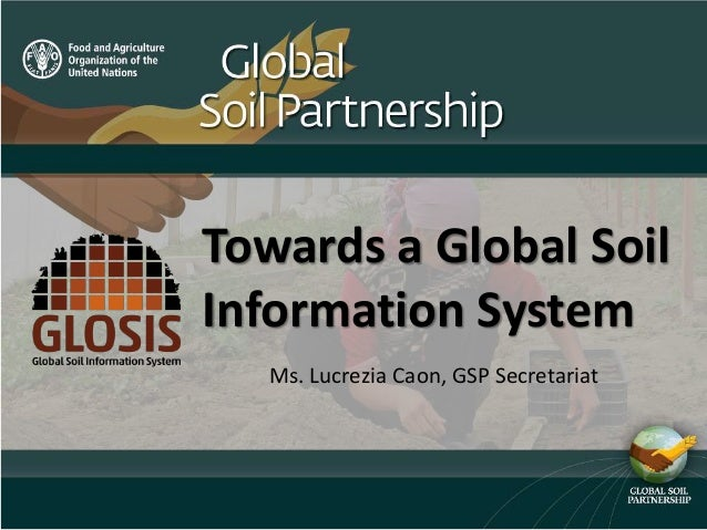 Towards a Global Soil Information System Ms. Lucrezia Caon, GSP Secretariat