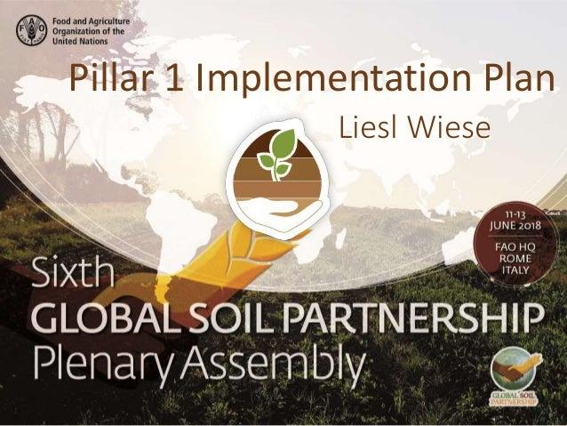 Liesl Wiese Pillar 1 Implementation Plan