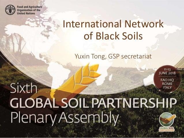 Yuxin Tong, GSP secretariat International Network of Black Soils