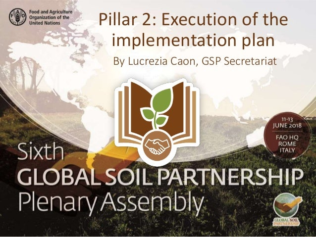 By Lucrezia Caon, GSP Secretariat Pillar 2: Execution of the implementation plan