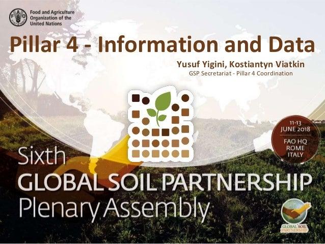 Pillar 4 - Information and Data GSP Secretariat - Pillar 4 Coordination Yusuf Yigini, Kostiantyn Viatkin