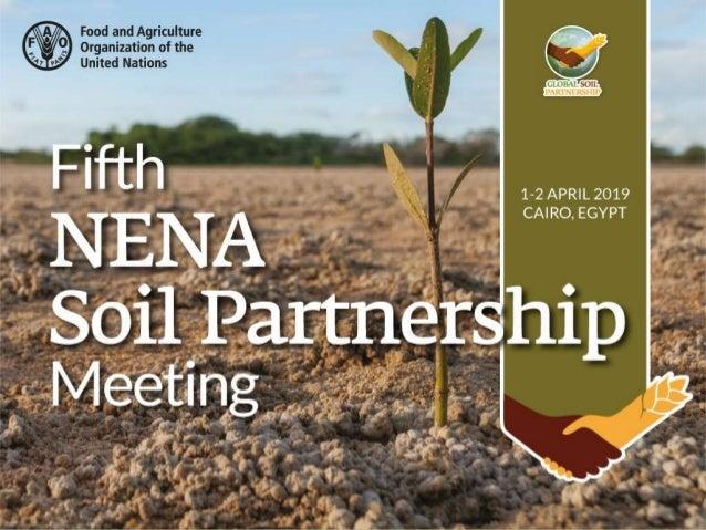 The National Soil Information System of Sudan Abdelmagid Ali Elmobarak