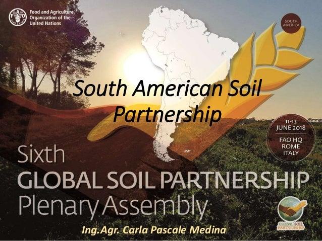Presenter name Title presentation South American Soil Partnership Ing.Agr. Carla Pascale Medina