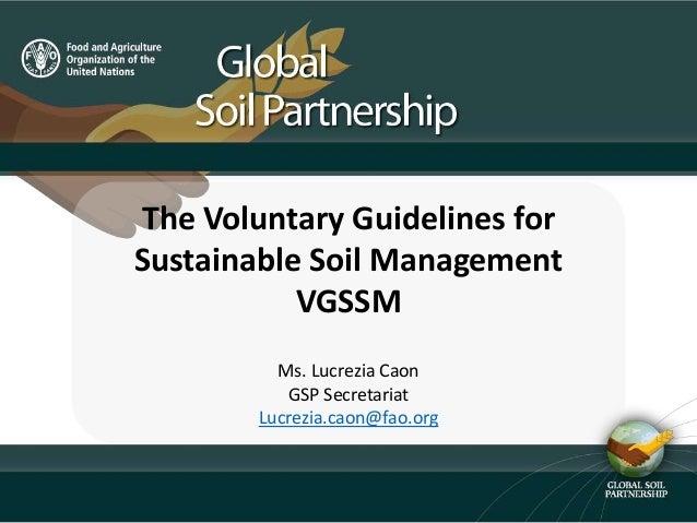 The Voluntary Guidelines for Sustainable Soil Management VGSSM Ms. Lucrezia Caon GSP Secretariat Lucrezia.caon@fao.org