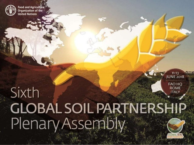 Isabelle Verbeke, Global Soil Partnership, FAO Making World Soil Day a success