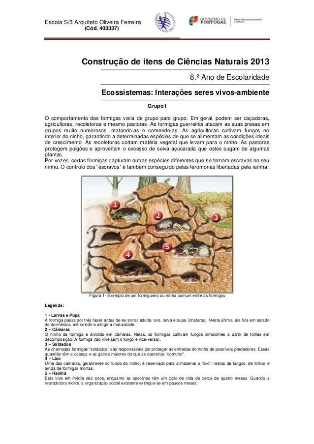 Escola S/3 Arquiteto Oliveira Ferreira                     (Cód. 403337)                   Construção de itens de Ciências...