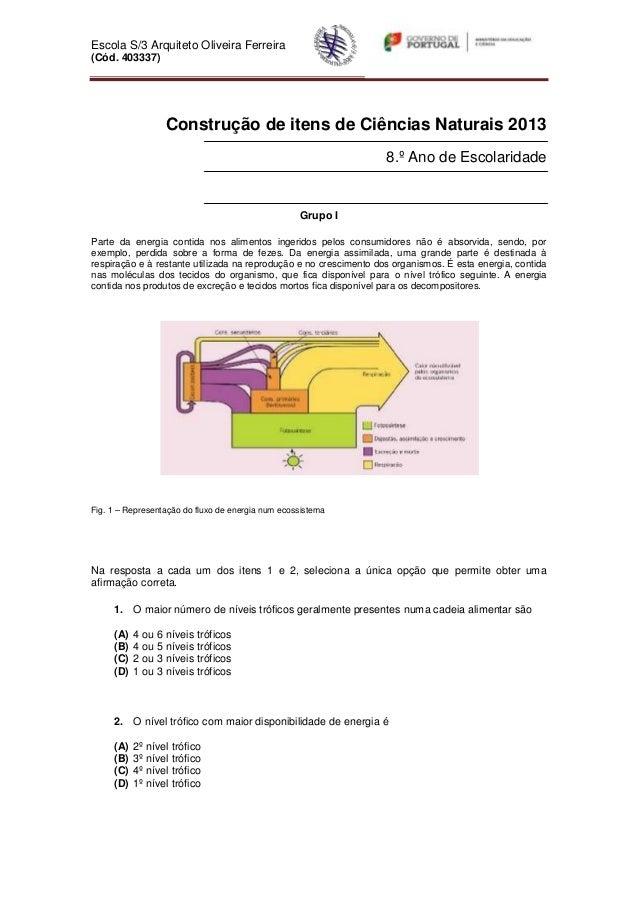 Escola S/3 Arquiteto Oliveira Ferreira(Cód. 403337)Construção de itens de Ciências Naturais 20138.º Ano de EscolaridadeGru...