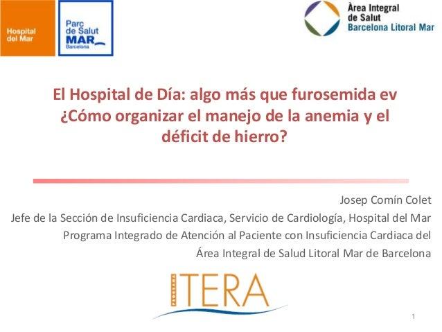 El Hospital de Día: algo más que furosemida ev         ¿Cómo organizar el manejo de la anemia y el                       d...
