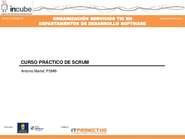 Promueve: Colabora: ORGANIZACIÓN SERVICIOS TIC EN DEPARTAMENTOS DE DESARROLLO SOFTWARE www.proiectus.eswww.incubegc.es CUR...
