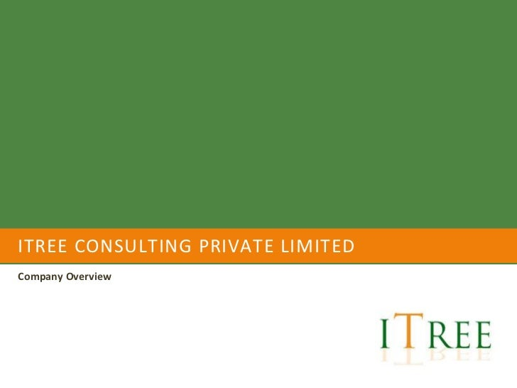 ITREE CONSULTING PRIVATE LIMITEDCompany Overview