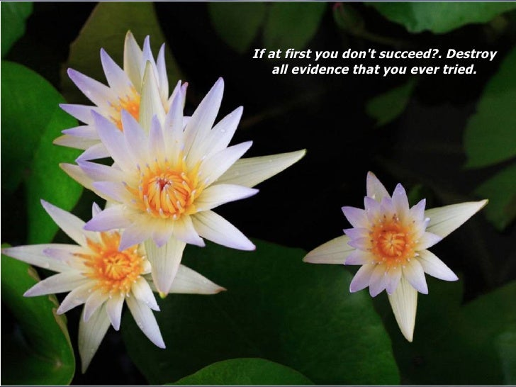 If at first you don't succeed?. Destroy all evidence that you ever tried.