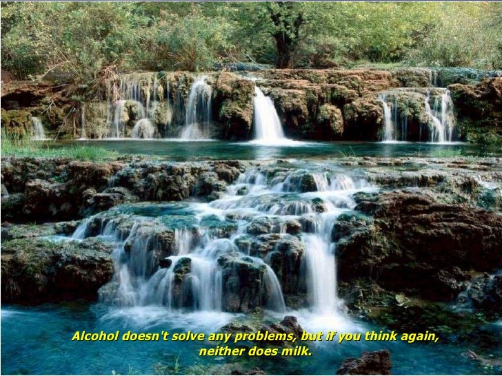 Alcohol doesn't solve any problems, but if you think again, neither does milk.